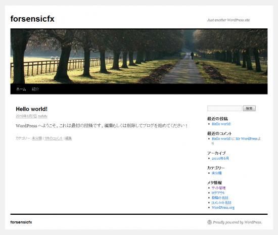 wordpress3.0RC版jaをインストールしてみた。標準themese
