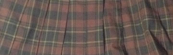 茶色と黒色のチェック柄プリーツスカート