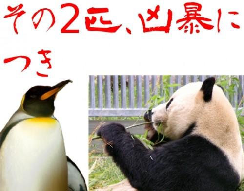 ペンギンとパンダ