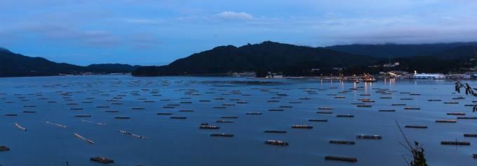 牡蠣の養殖場の風景