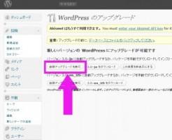 wordpress3.0-kousinn1
