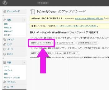 wordpress3.0-アップグレード、自動更新してみた。