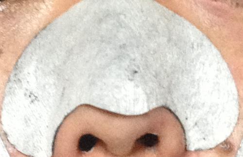 毛穴パック使用後の鼻