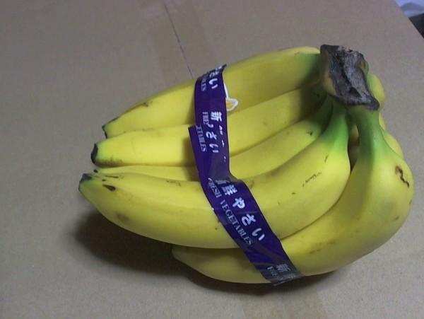 バナナの真横写真