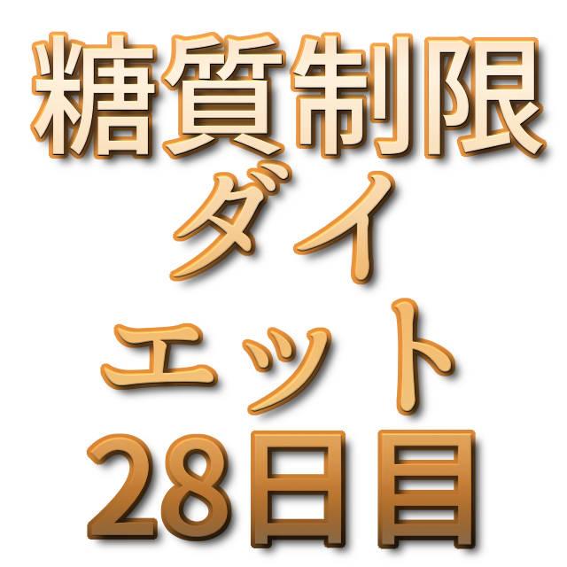 文字「糖質制限ダイエット28日目」