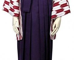 卒業式 袴 女性 無地 紐下87cm-99cm