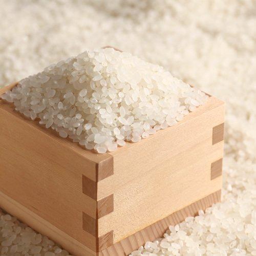 黒い米 ⇒虫が吸った米 ⇒害はないらしい
