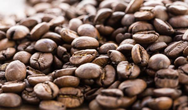 コーヒー豆の写真