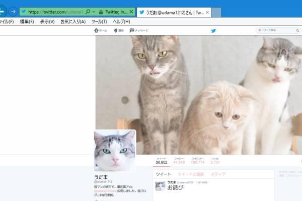 うだま(@udama1212)さん | Twitter https://twitter.com/udama1212