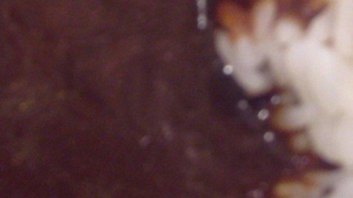 吉野家の黒カレー並盛のルー