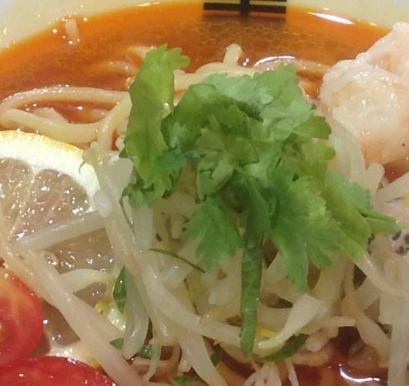 パクチーとモヤシ:竹末東京プレミアムの限定麺