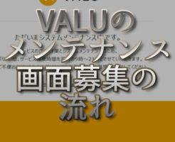 文字『VALUのメンテナンス画面募集の流れ』