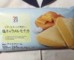 パッケージ写真 塩キャラメルモナカ セブン&アイ|アイスクリーム