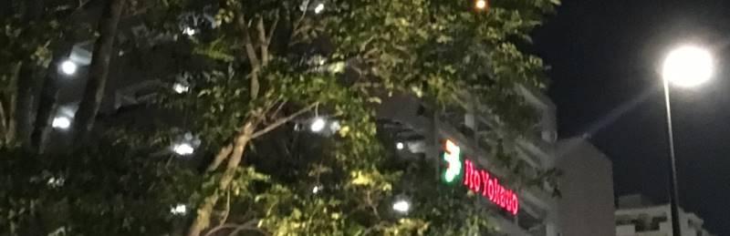 東京都内のイトーヨーカドーの建物のロゴと木