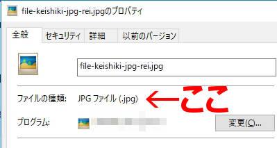 ファイルからファイル形式の確認の仕方