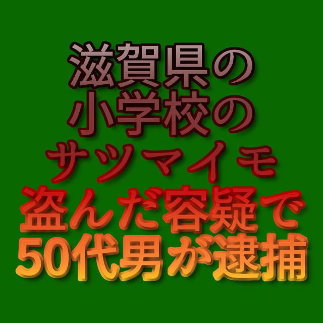 文字「滋賀県の小学校のサツマイモ盗んだ容疑で50代男が逮捕」