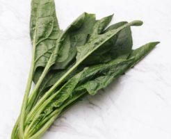 小松菜の栄養成分とカロリー・糖質など|野菜