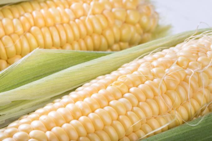 トウモロコシの実の部分(写真)