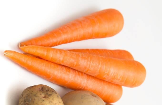 根菜のニンジンの写真