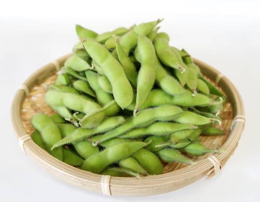 枝豆(えだまめ)の写真