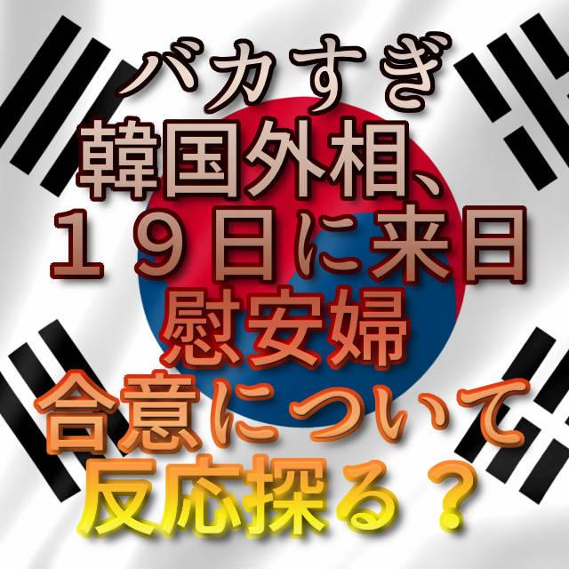 文字「バカすぎ 韓国外相、19日に来日 慰安婦合意について反応探る?」