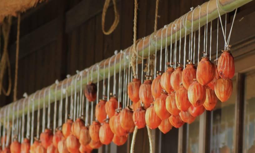 屋根の軒下に干された干し柿