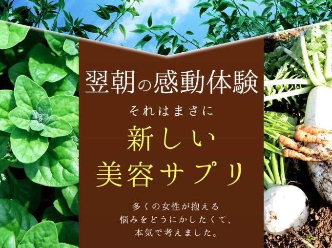 『濃縮練り酵素「houbi(宝美)」』