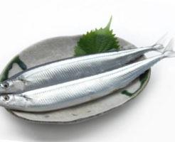 サンマ(秋刀魚)の栄養成分とカロリー・糖質・旬など|魚介類