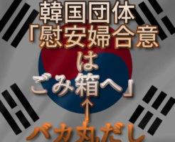 文字『韓国団体「慰安婦合意はごみ箱へ」←バカ丸だし』