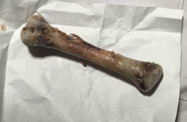 食べ終えた骨 フライドチキン(骨付き)|ファミリーマート