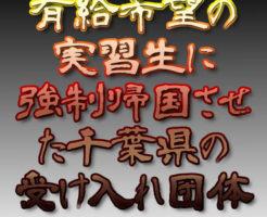 文字『有給希望の実習生に強制帰国させた千葉県の受け入れ団体』