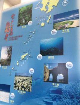 鹿児島の島々