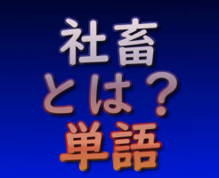 文字『社畜とは?|単語』