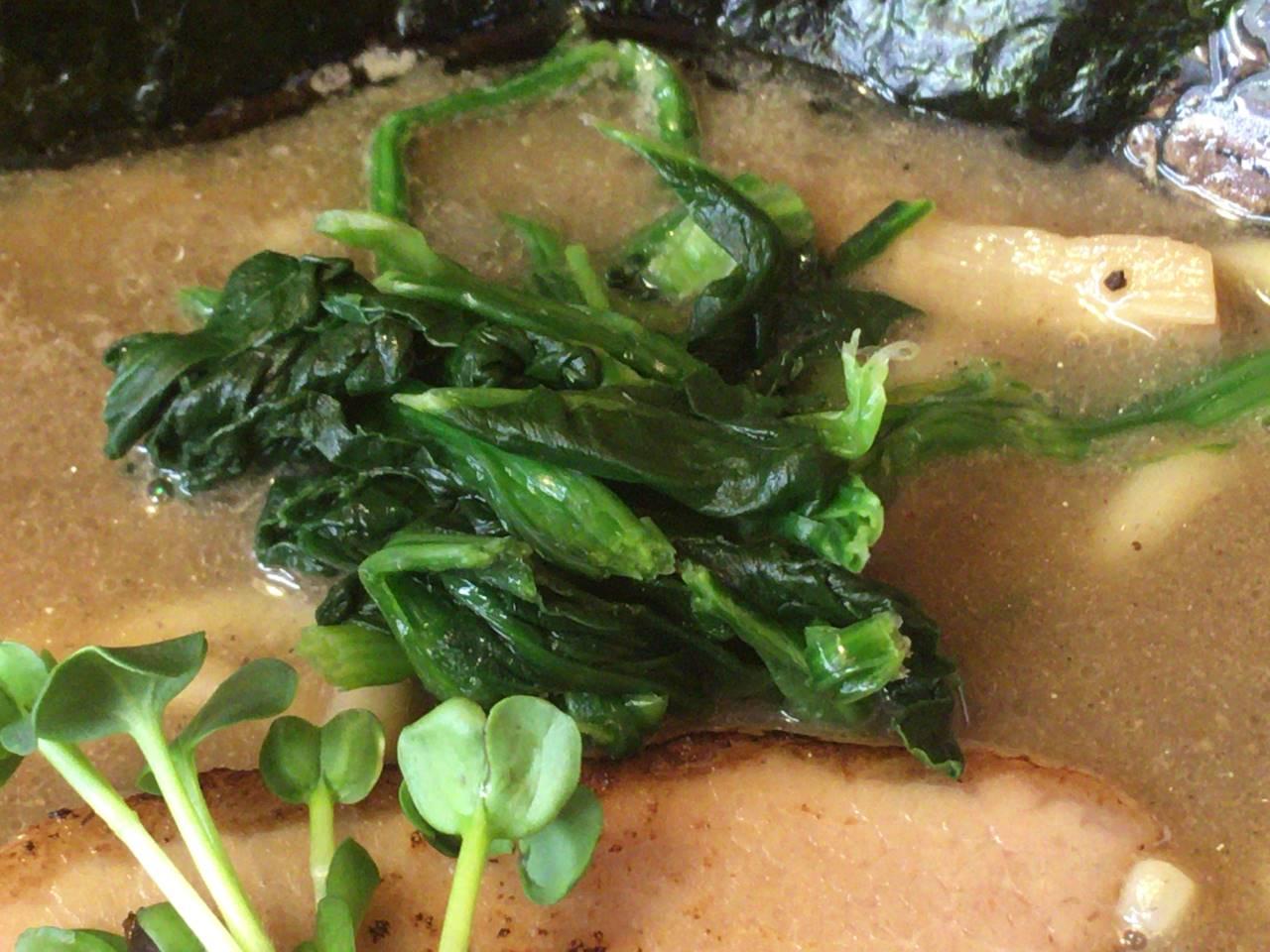 麺屋頂中川會の濃厚魚介鶏らーめん の具のほうれん草