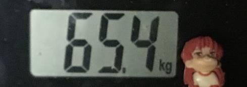 2019年6月14日の体重:65.4kg