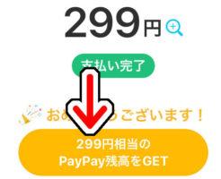 299円使って299円還元されるキャンペーンの対象では無い筈だが『PayPay(ペイペイ)』還元