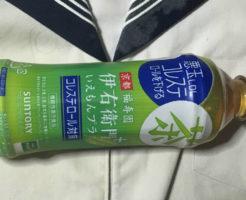 サントリー悪玉LDLコレステロールを下げる 伊右衛門+ 緑茶