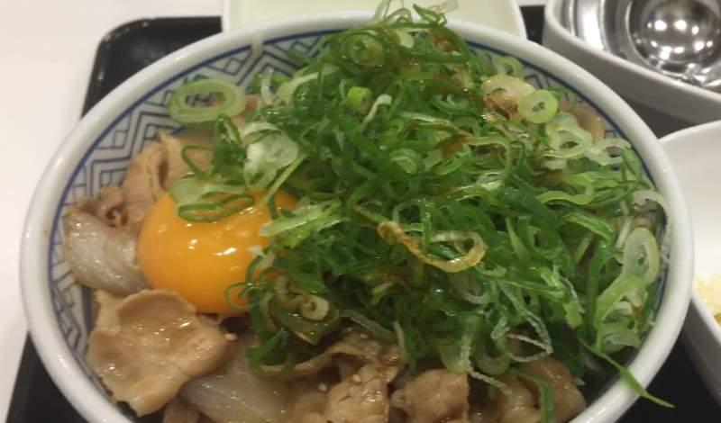 ねぎ玉豚丼|吉野家