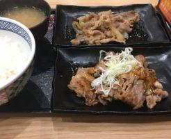 全体図:吉野家の牛牛定食690円