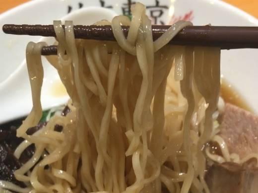 麺全体図:竹末東京プレミアムのこの日の麺