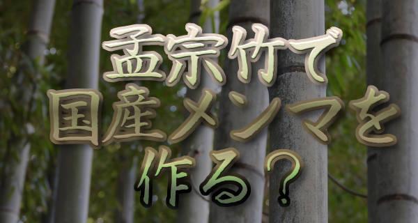 孟宗竹で国産メンマを作る?